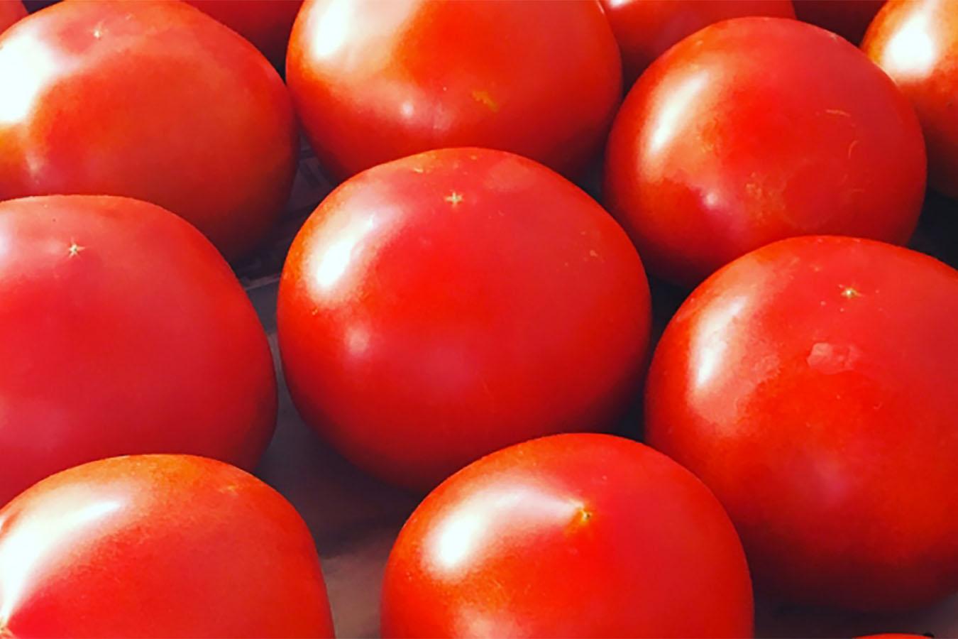 Estate, tempo di salsa di pomodoro
